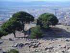 Altarbasis Pergamon